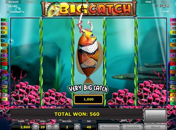 Big Catch online